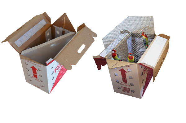 boxes for live birds