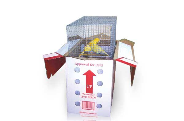 Boxes for shipping live bird
