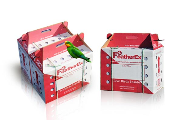 live birds shipping boxes