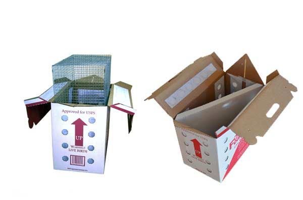 Live Parrot shipping boxes